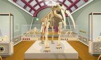 Trouver le trésor caché dans le musée