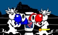 Boxe entre vaches