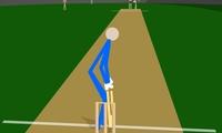 Cricket Arcade