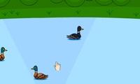 Jeux de canard