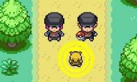 Jeux de Pokemon