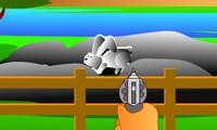 Chasser des lapins