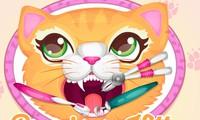 Dentiste pour chat